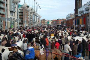 Smithfield horse market 2008